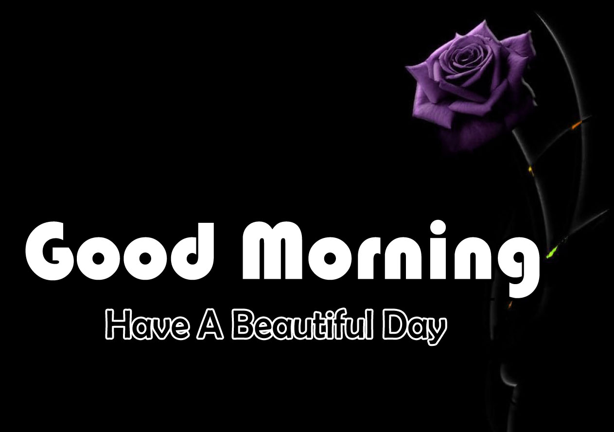 Full HD Good Morning Images Free Download