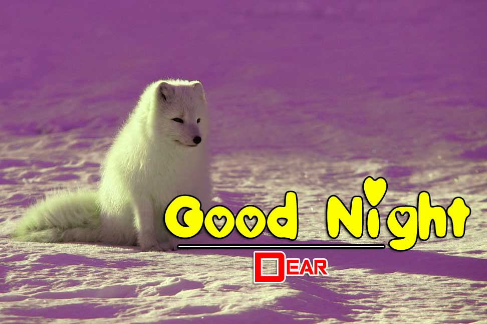 Full HD Good Night Pictures Download 2