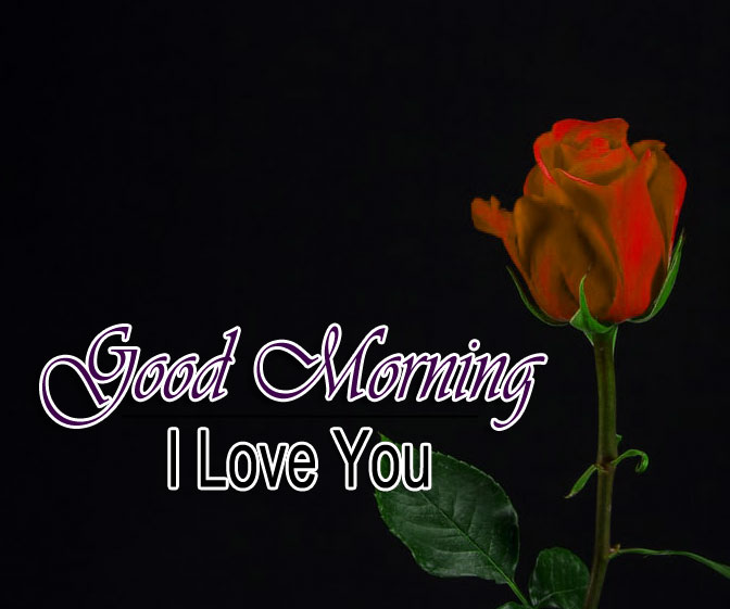 Full hd Best Good Morning Wishes 4k Images Download