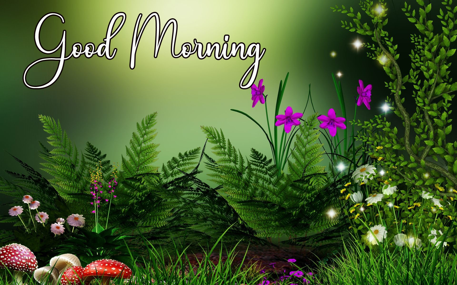 Good Morning Photo Download 3 2