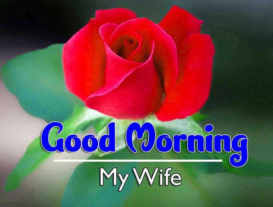 Good Morning Pic Download Free