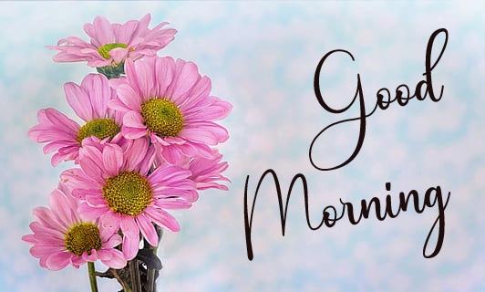 Good Morning Pics Download 2