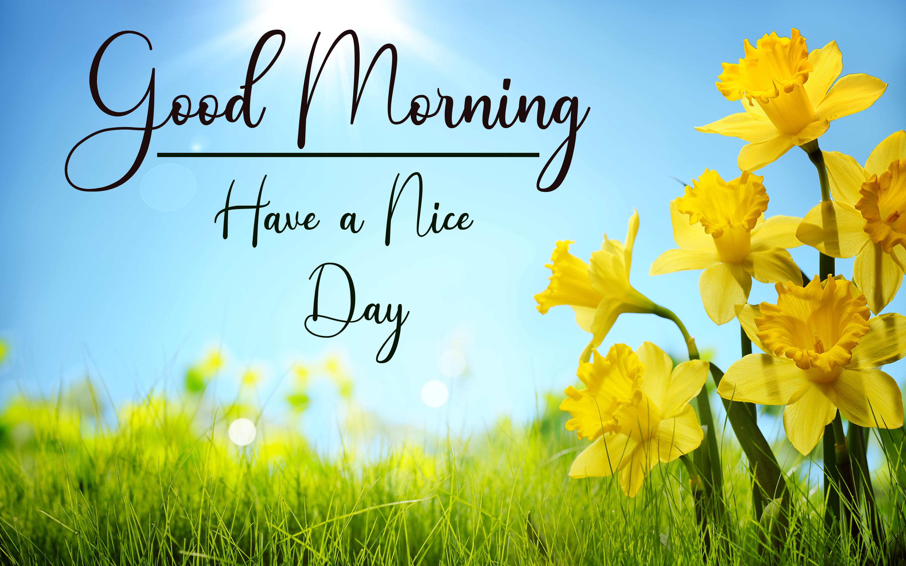 Good Morning Pics Download Free 1