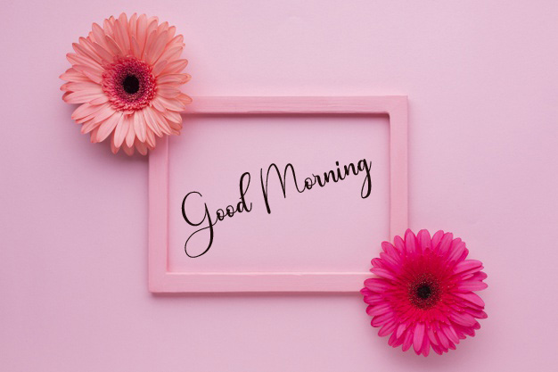 Good Morning Pics Download Free 2 1