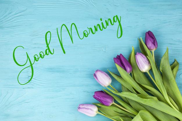 Good Morning Pics Free Download 2 1
