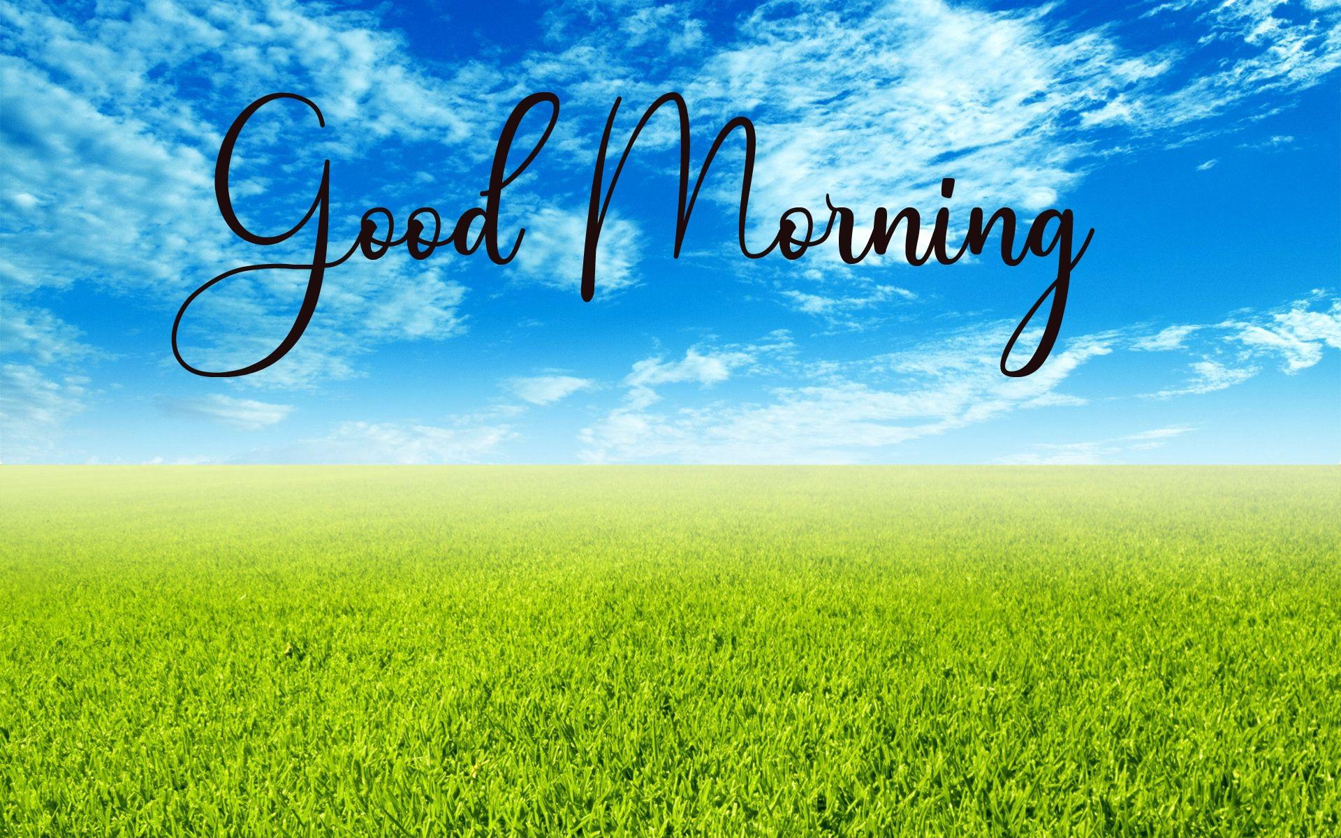 Good Morning Pics Free New Download