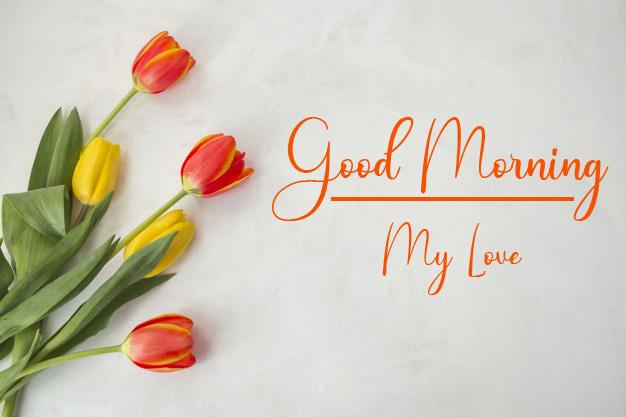 Good Morning Pics Free for Faceboo whatsapp