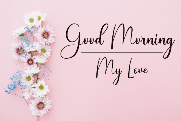 Good Morning Pics Free for Friend