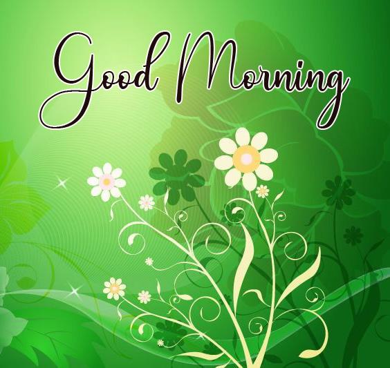 Good Morning Pics Wallpaper Free