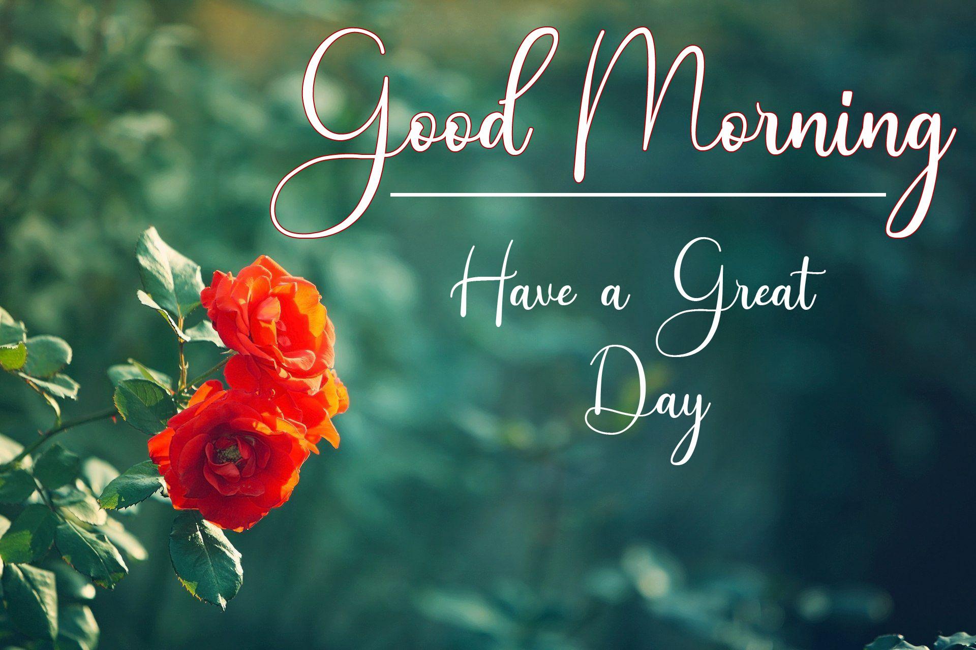 Good Morning Wallpaper Free New Download