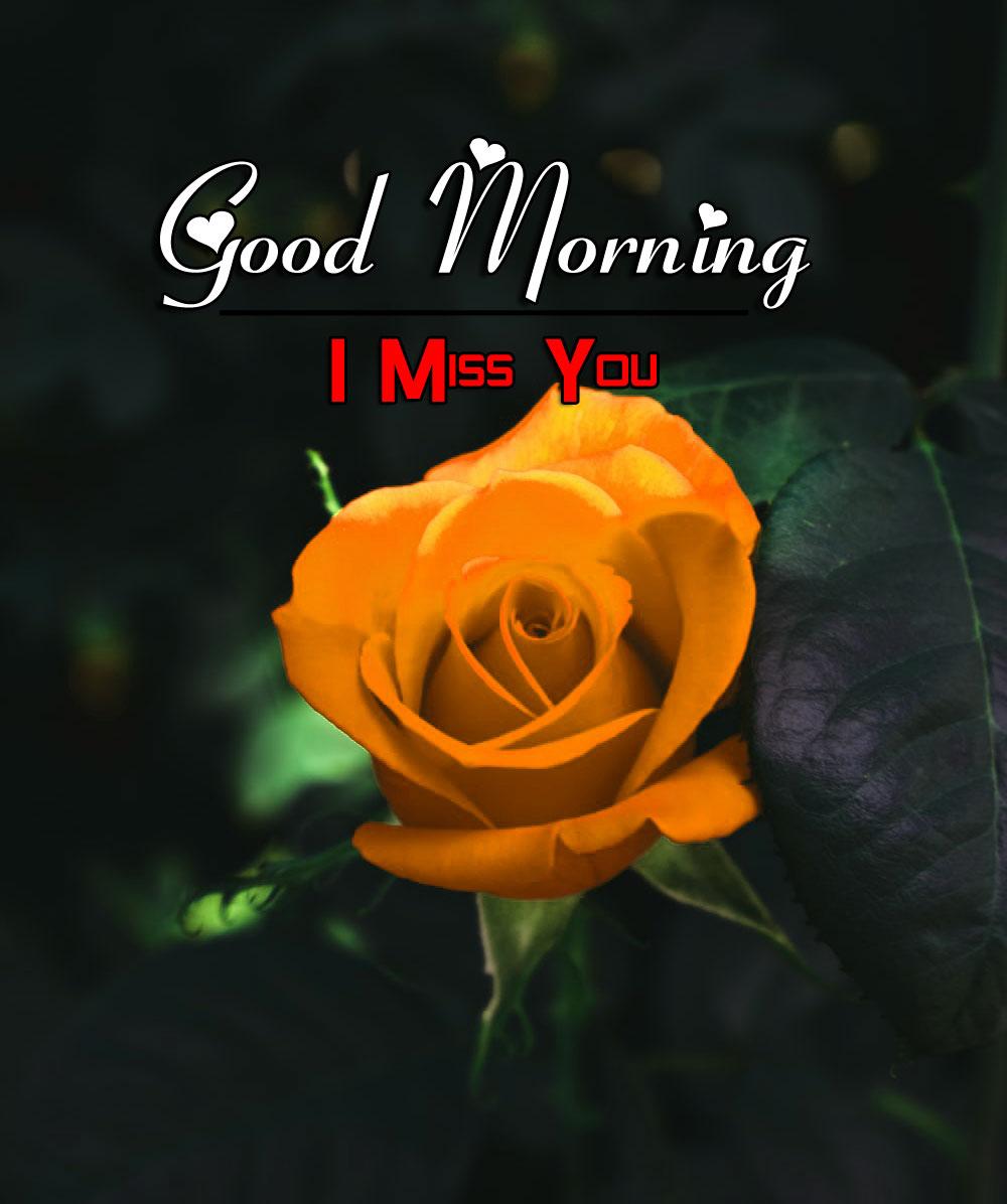 Good Morning Wallpaper HD 1