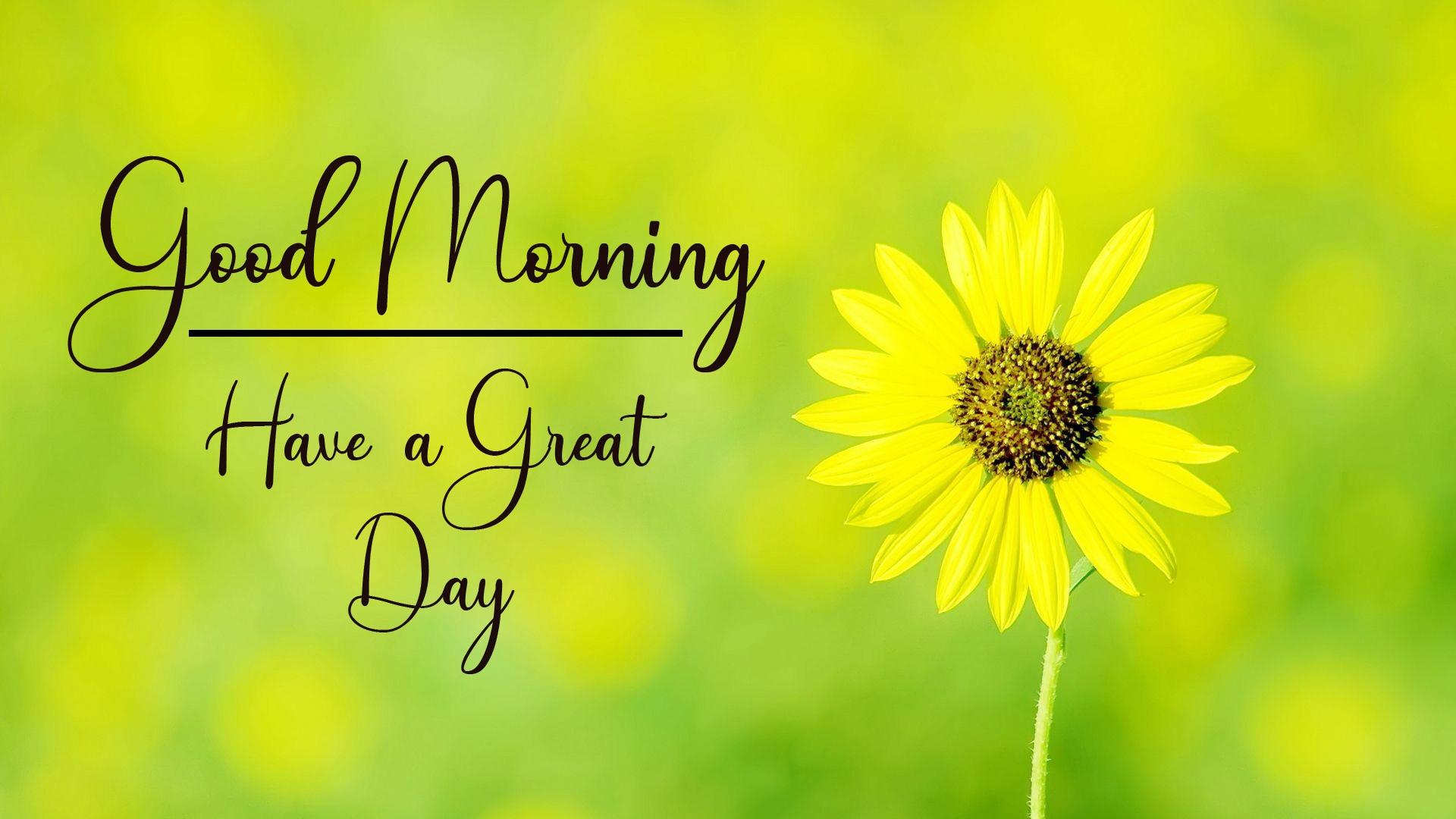 Good Morning Wallpaper New Download 1