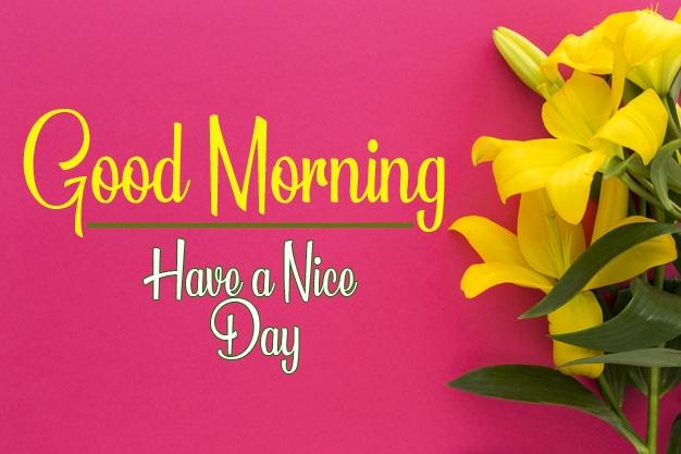 Good Morning Wallpaper New Download 2