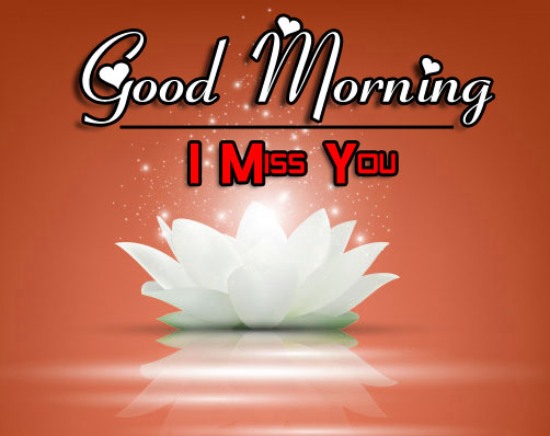 Good Morning Wishes 4k Images Download