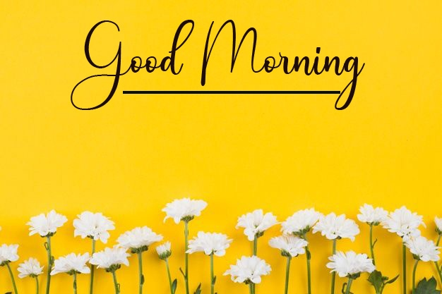 Good Morning pics Images Download