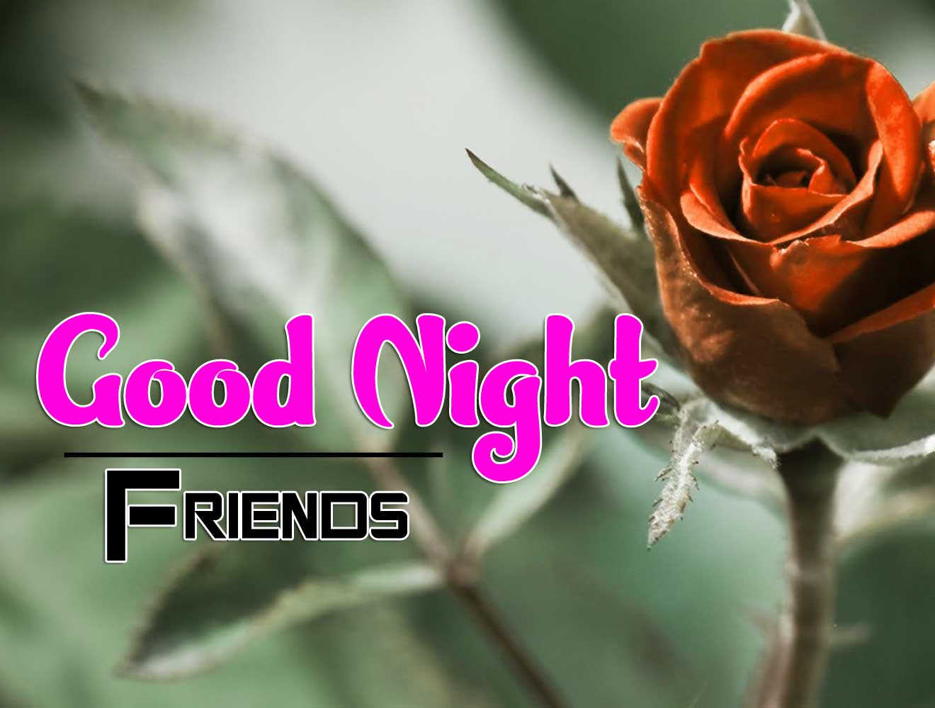 Lover Free Full HD Good Night Pics Images