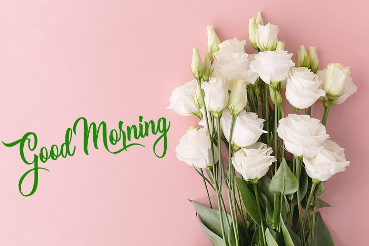 New 4k Good Morning Pics Download 2
