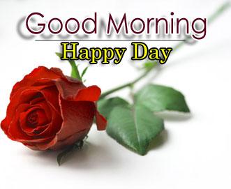 New Best Best Flower 4k Good Morning Images Download