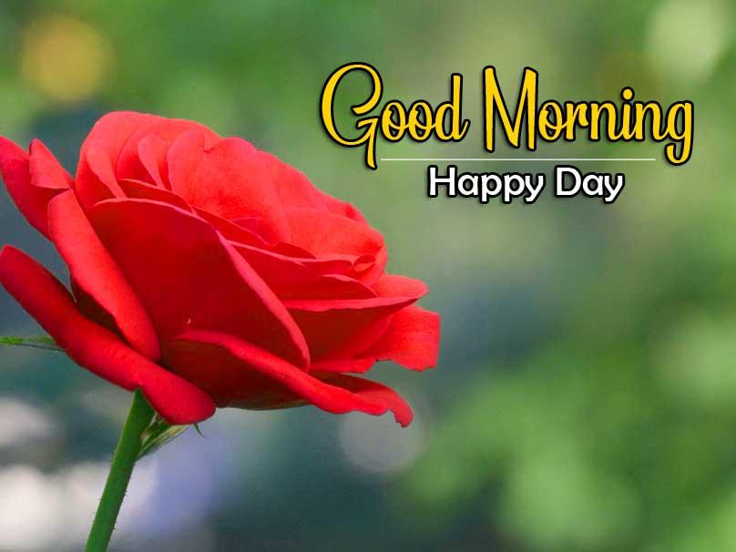 New Best Quality Wonderful Good Morning 4k Pics Images