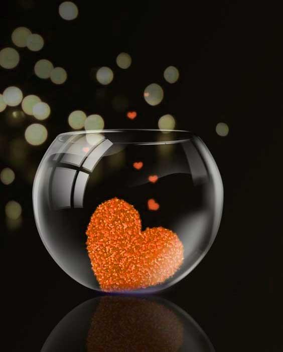 New Love Dp Photo Hd