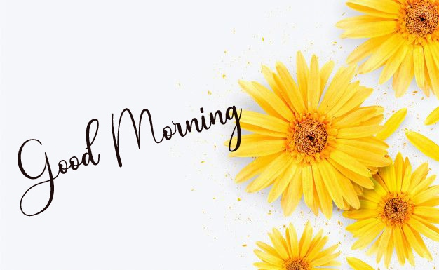 New Top Good Morning Images Download 1