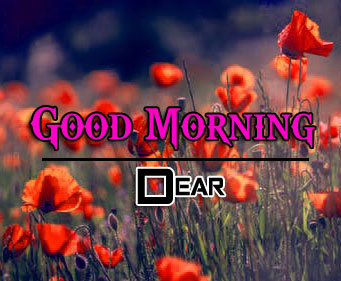 New Top Good Morning Images Download