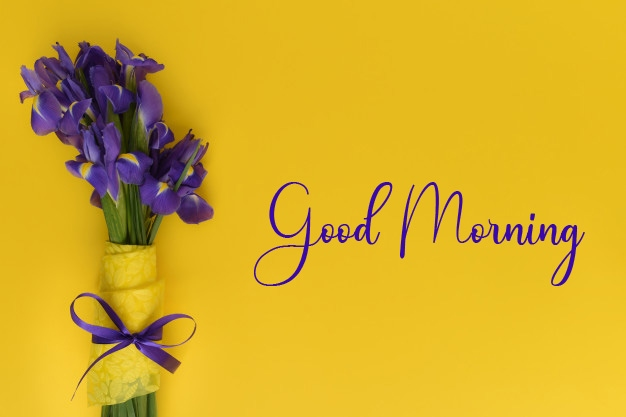 New Top Good Morning Pics Download