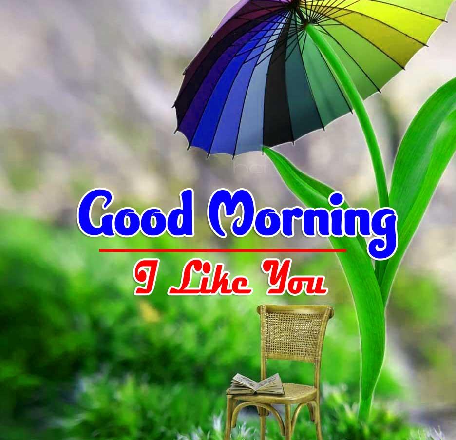 Quality Free Wonderful Good Morning 4k Images Download