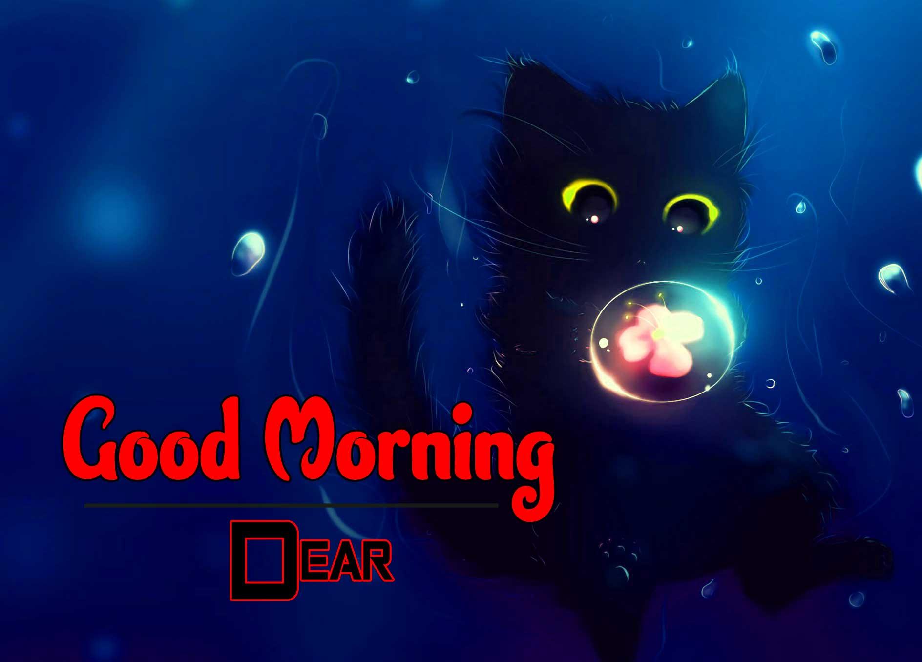 Quality Free Wonderful Good Morning 4k Pics Images Download