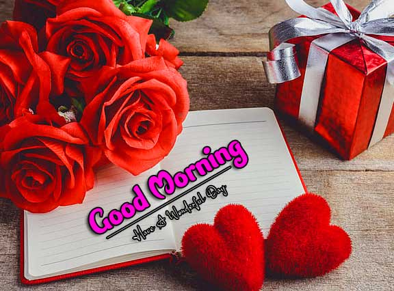 Red Rose Free Good Morning Wishes Pics Images Download