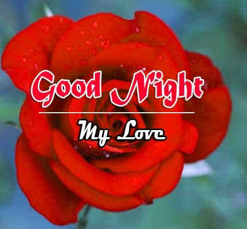 Rose Free Full HD Good Night Pics Images Download 2