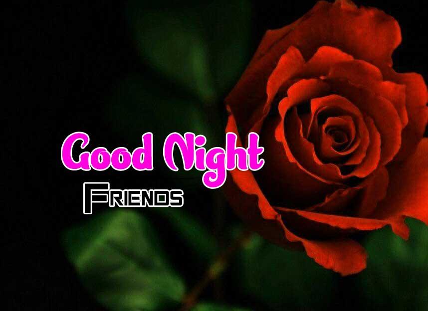 Rose Free Full HD Good Night Pics Images