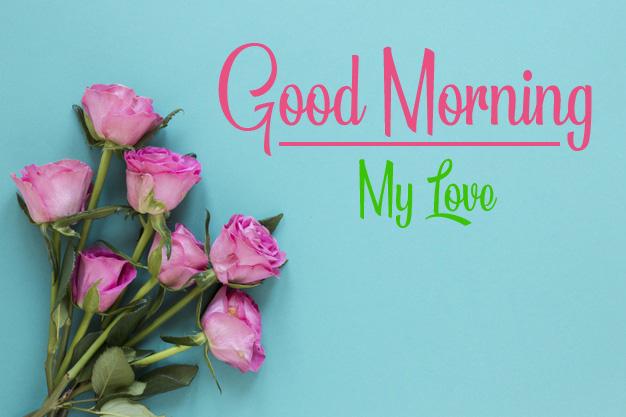Rose Free Good Morning Images Free 1