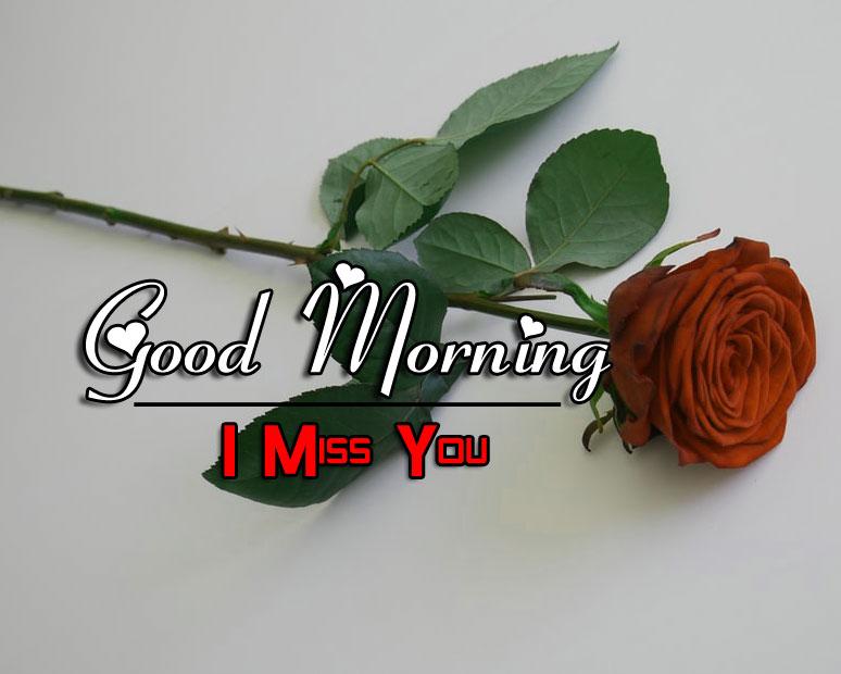 Rose Free Good Morning Images Free