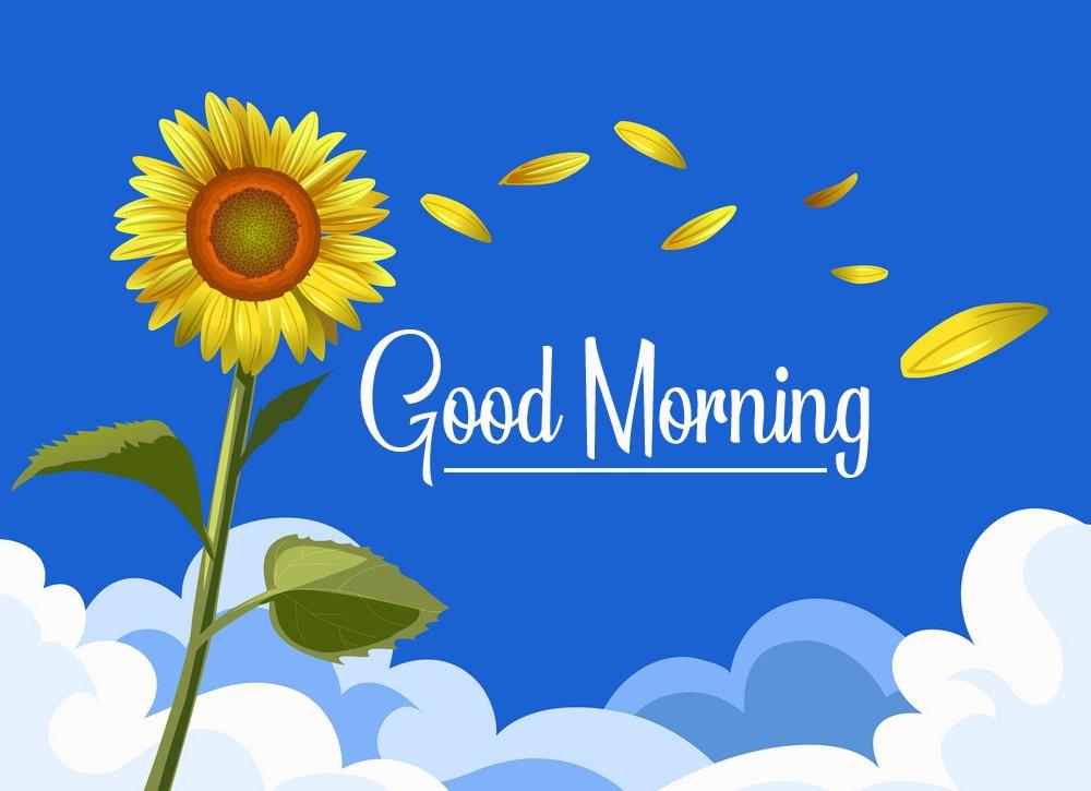 Sunflower Good Morning Images Free