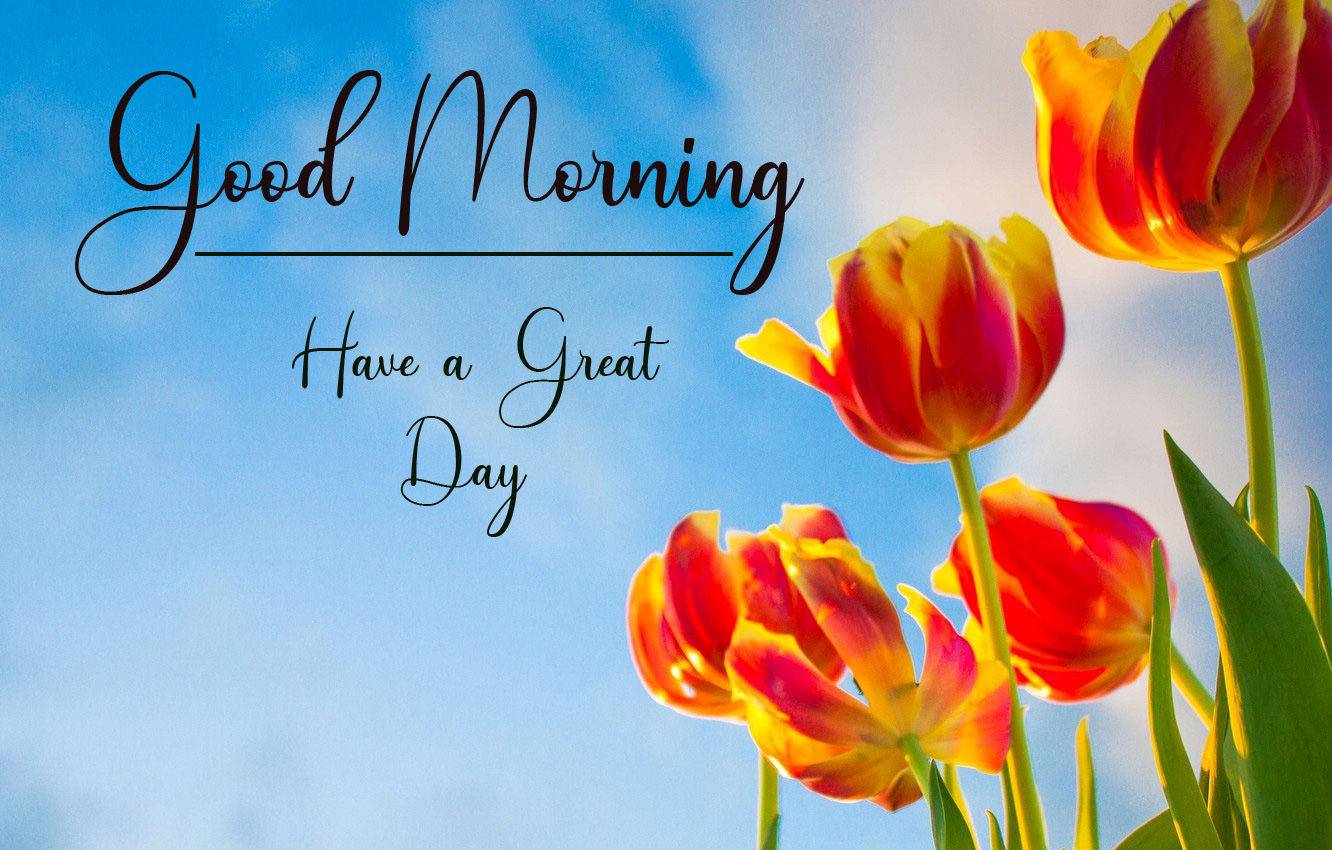 Top New Good Morning Images Download
