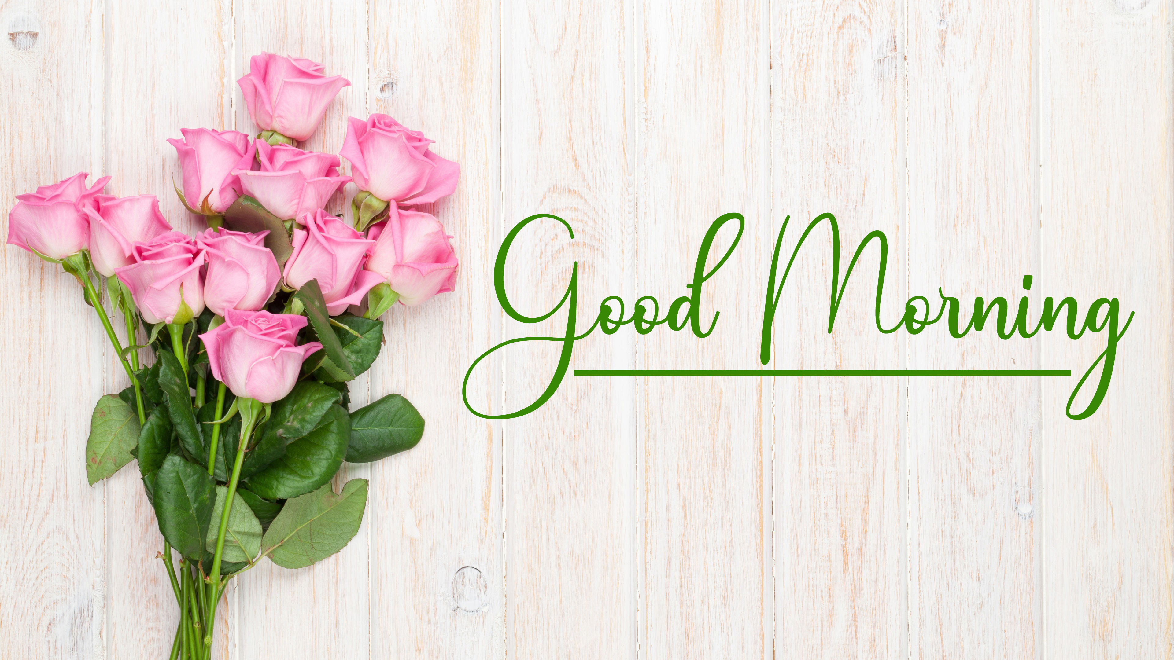 Top New Good Morning Pics Download