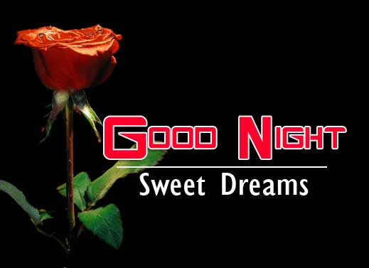 With Red Rose Full HD Good Night Pics Images Download