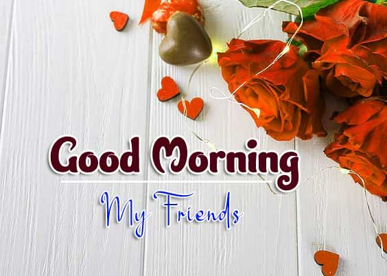 With Rose Free Wonderful Good Morning 4k Images Download
