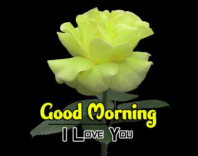 Wonderful Good Morning 4k Photo Download 2
