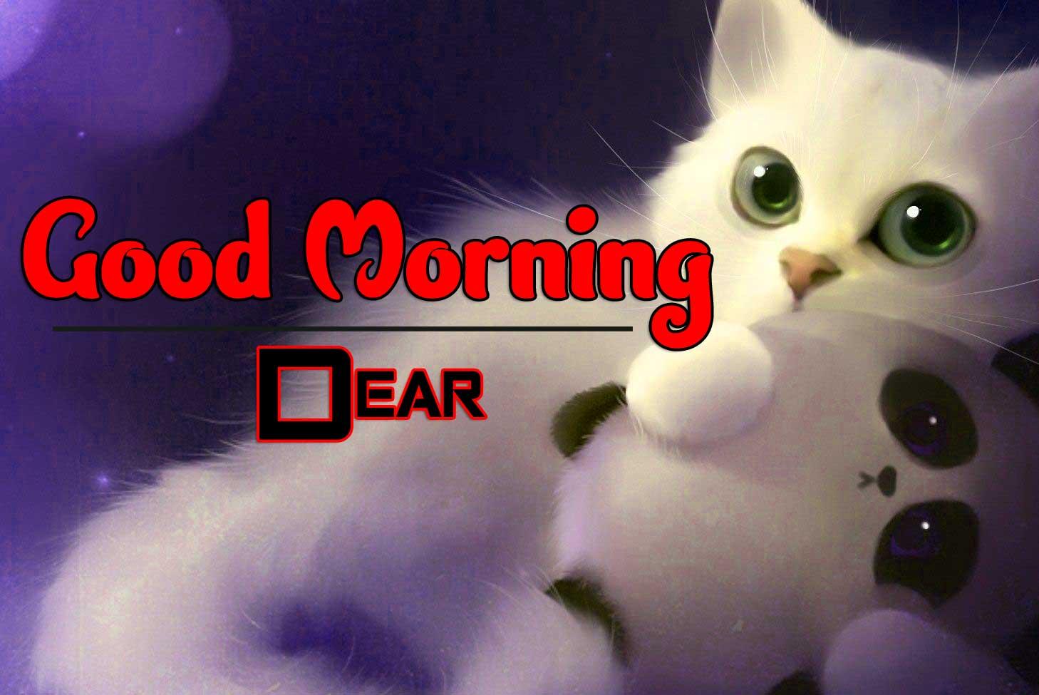 Wonderful Good Morning 4k Photo Download Free