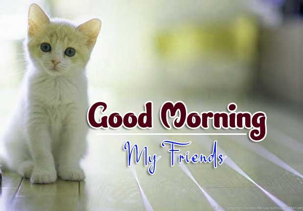 Wonderful Good Morning 4k Pics Download 3