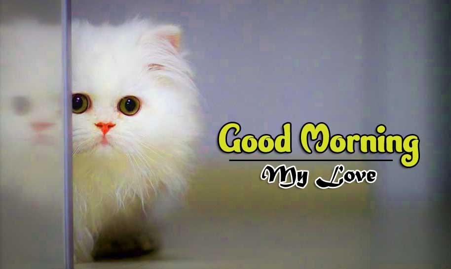 Wonderful Good Morning 4k Pictures Download
