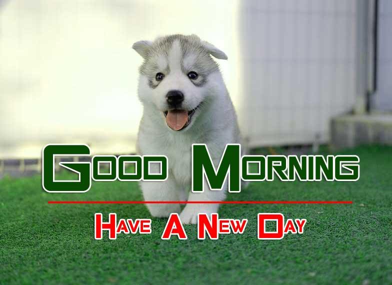 Wonderful Good Morning 4k Wallpaper Download 3