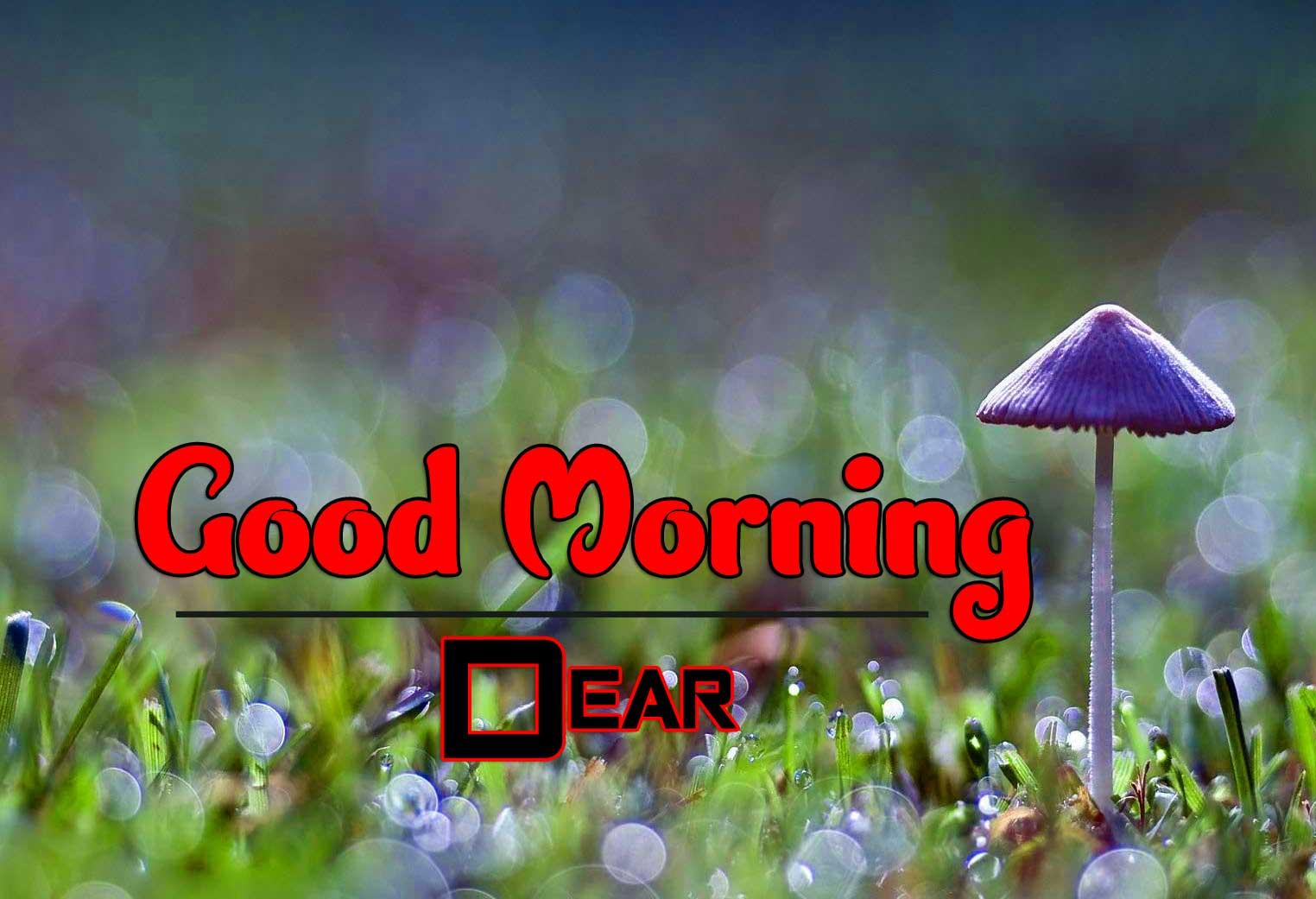 Wonderful Good Morning 4k Wallpaper Free