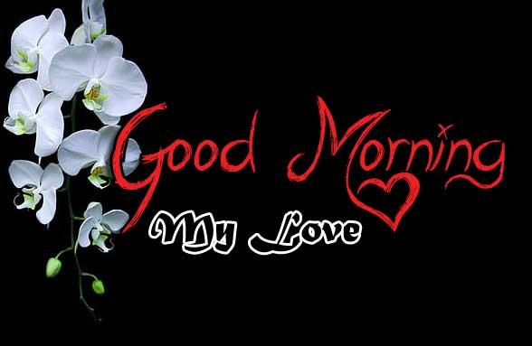 beautiful flower good morning images wallpaper hd