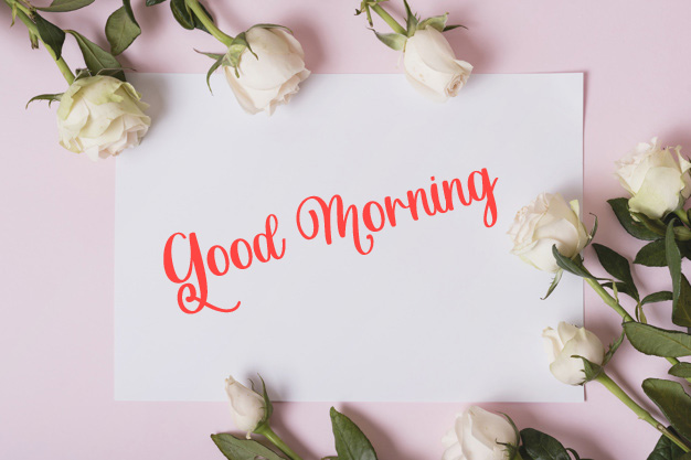 beautiful good morning images photo download 1