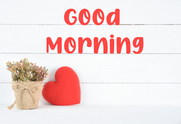 beautiful good morning images photo hd 1