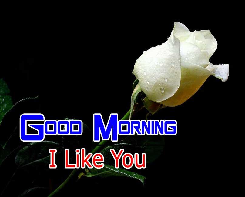beautiful good morning images photo hd