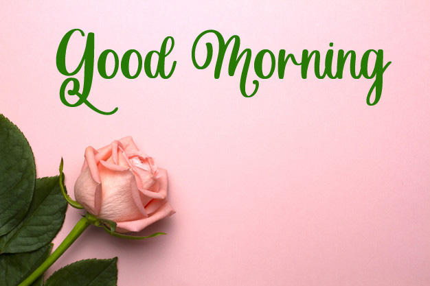 beautiful good morning images pictures download 1